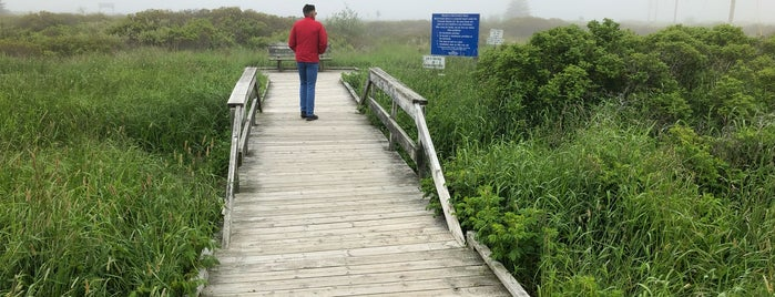 Fisherman's Cove Boardwalk is one of NOVA.