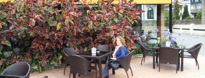 Restaurante MiGaea is one of Orte, die Valentin gefallen.