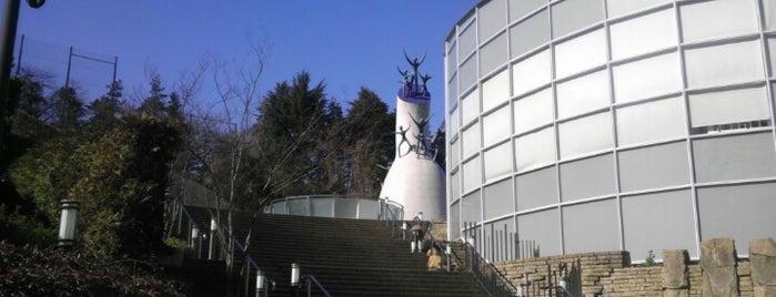 Taro Okamoto Museum of Art is one of Japan.