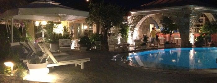 Nikoleta Luxury Villa is one of สถานที่ที่ İlkim ถูกใจ.