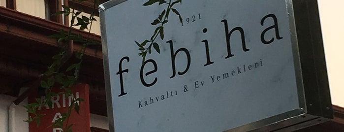 Febiha is one of Posti che sono piaciuti a Glhn.