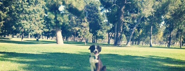 Heartwell Park is one of Posti che sono piaciuti a Dan.