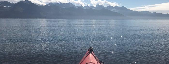 Kayak Adventures Worldwide is one of Alaska.