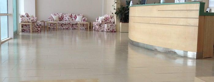 Al Mashatah Ladies Center is one of Locais curtidos por asma.