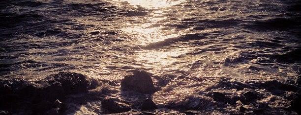 Sonny Bono Salton Sea National Wildlife Refuge is one of Salton Sea!.