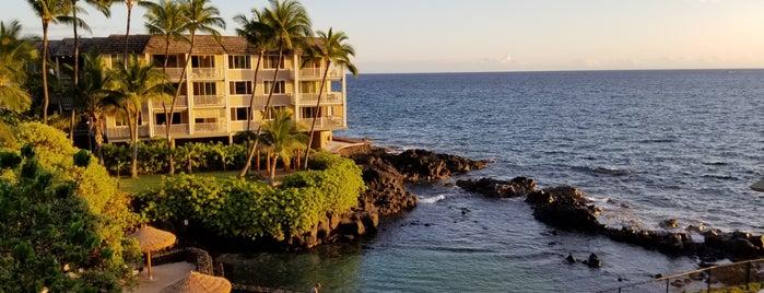 Kona Reef is one of Hawaii.