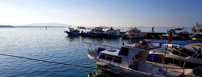 Altınkum Marina is one of Umut : понравившиеся места.