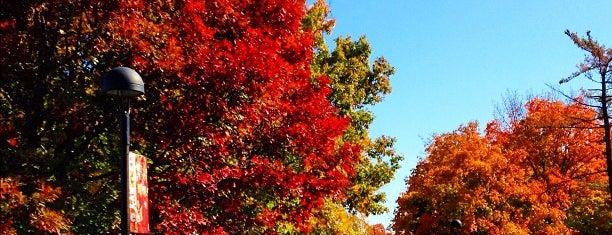 Southern Illinois University Edwardsville is one of Illinois's Greatest Places AIA.