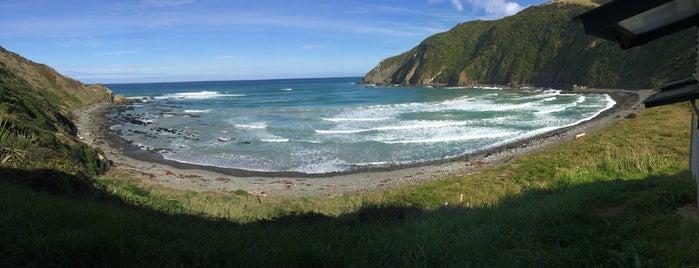 Roaring Bay is one of Nuova Zelanda.