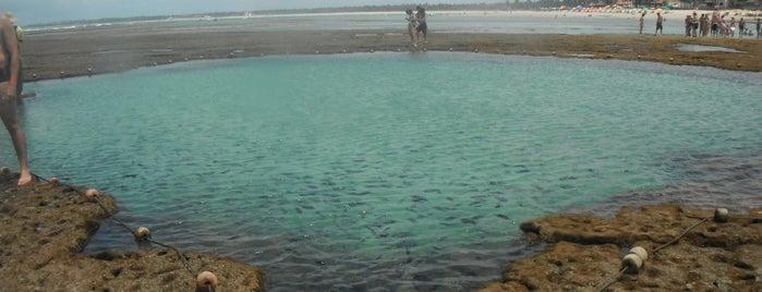 Piscinas Naturais de Porto de Galinhas is one of Porto de Galinhas, Brasil.