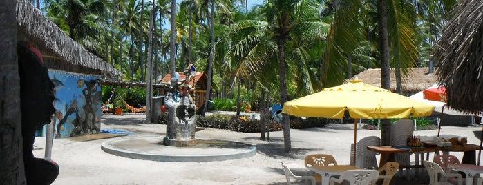 Bora Bora is one of Porto de Galinhas, Brasil.