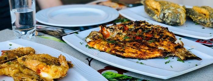 Fares Seafood is one of สถานที่ที่ Abomutaz Alrasheed ถูกใจ.