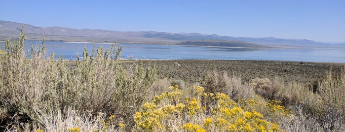 Mono Lake Committee Information Center and Bookstore is one of Desert Places.