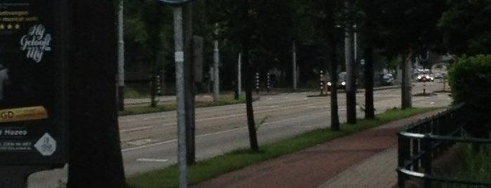 Rinus Michelsbrug (Brug 245) is one of Amsterdam.