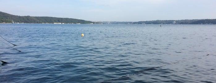 Limanda Balık is one of Recep'in Beğendiği Mekanlar.