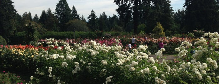 Washington Park is one of Portlandia.