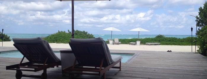 Parrot Cay is one of Mariana'nın Beğendiği Mekanlar.