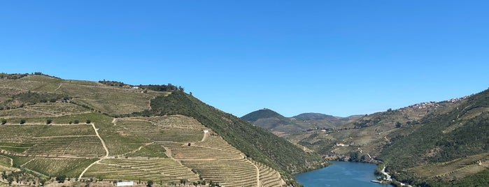 Quinta do Pôpa is one of Wine World.