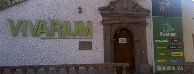Vivarium is one of Ecuador.