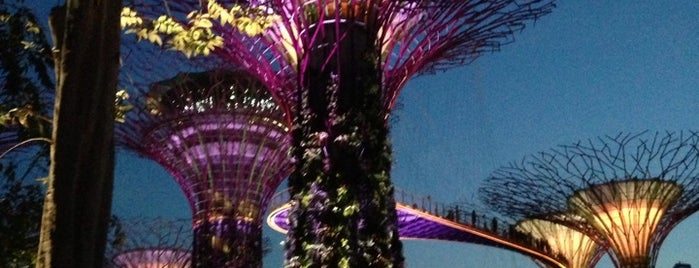 Supertree Grove is one of Singapur, SIN.