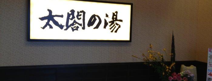 太閤山天然温泉 太閤の湯 is one of 訪れた温泉施設.