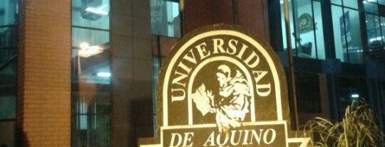 Udabol - Universidade de Aquino de Bolívia is one of Orte, die Katherine gefallen.
