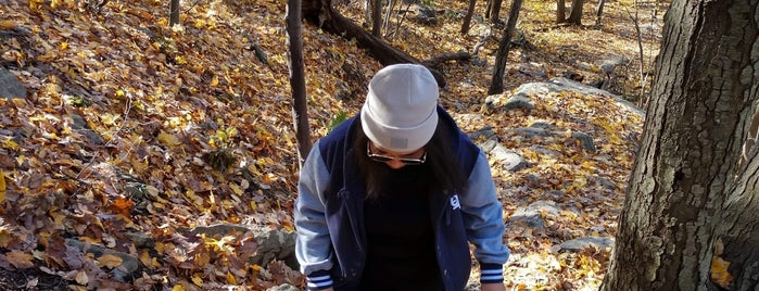Anthonys Nose / Appalachian Trail is one of NYC Dating Spots.