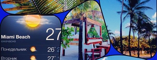 Nikki Beach Miami is one of Global Pints Society.