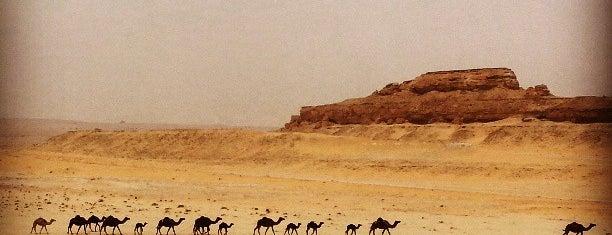 Dammam-Riyadh highway is one of أماكن جميلة حول العالم.