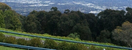 Mt Dandenong is one of Aussie Trip.