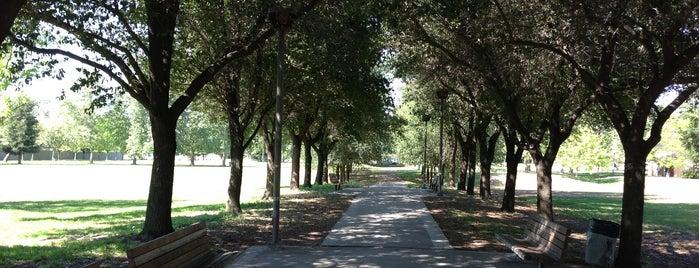 Bicentenial Park is one of Posti che sono piaciuti a Jeff.