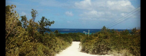 Shoal Bay Beach is one of Anguilla.