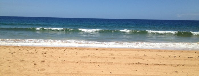 Collaroy Beach is one of Maryさんのお気に入りスポット.