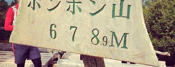 ポンポン山(加茂勢山) is one of まじめに気になるベニュー.