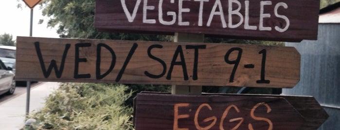 Eden East at Springdale Farm is one of Austin.