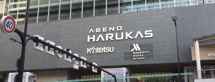 Tennoji Station is one of Locais curtidos por 高井.