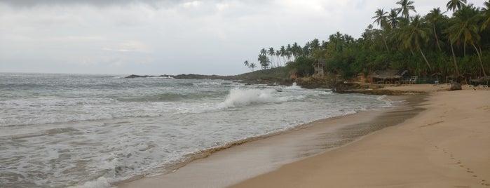 Goyambokka Beach is one of Sri Lanka 🌴.