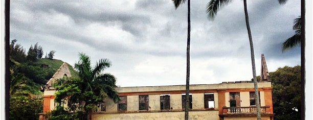 Loulu Palm Estate is one of 🏝Oahu 🌋🏖☀️🕶.