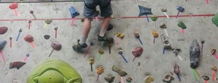 Climb Time Indy is one of Tempat yang Disukai Bradley.