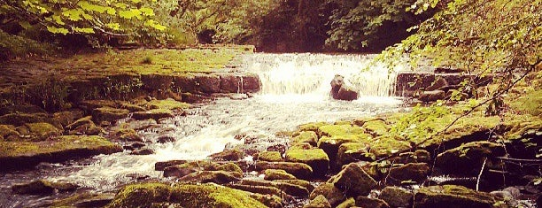 Hardcastle Crags is one of Tempat yang Disukai Tristan.