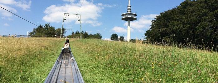 Sommerrodelbahn Hoherodskopf is one of Hotspots Hessen | Spiel & Spaß.