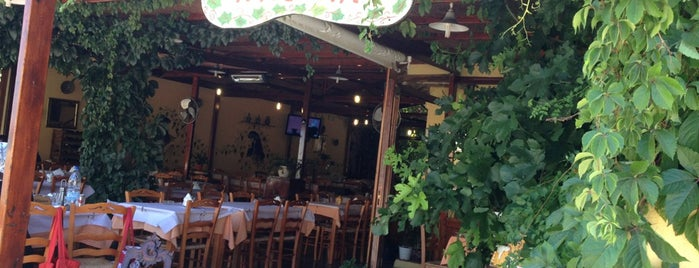 Dionysos Taverna is one of Chios - Sakız Adası.