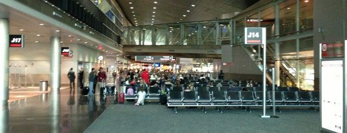 Aeroporto Internacional de Miami (MIA) is one of Airports (around the world).