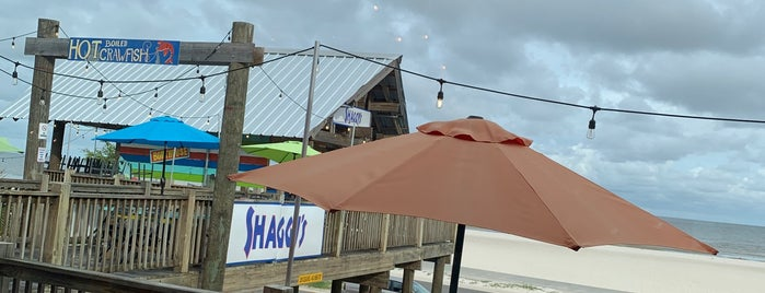 Shaggy's Gulfport is one of Dylan : понравившиеся места.