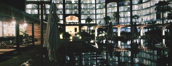 Krystal Grand Los Cabos is one of Lugares favoritos de Manolo.