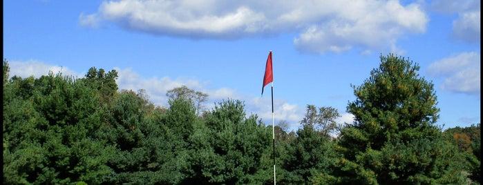 Mini Golf VA