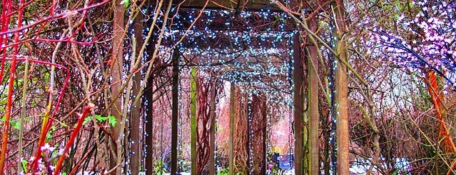 Glasgow Botanic Gardens is one of Europe 16.