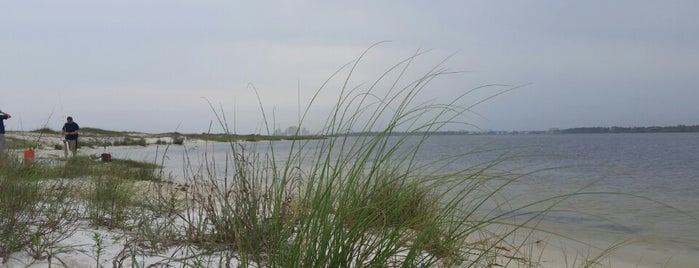 Johnson Beach's is one of Pensacola /Perdido Key.