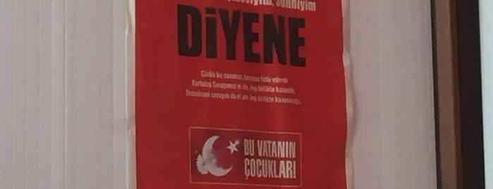 Çiçek Ali Izgara is one of Bora : понравившиеся места.