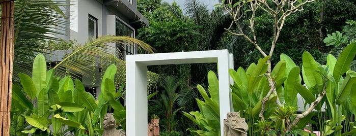 The Nani is one of !Bali?.